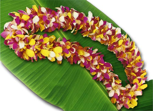 130 Blossom Orchid Lei - Click Image to Close
